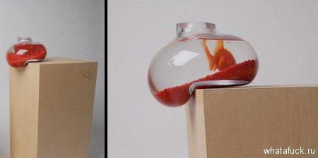 bfishbowl01