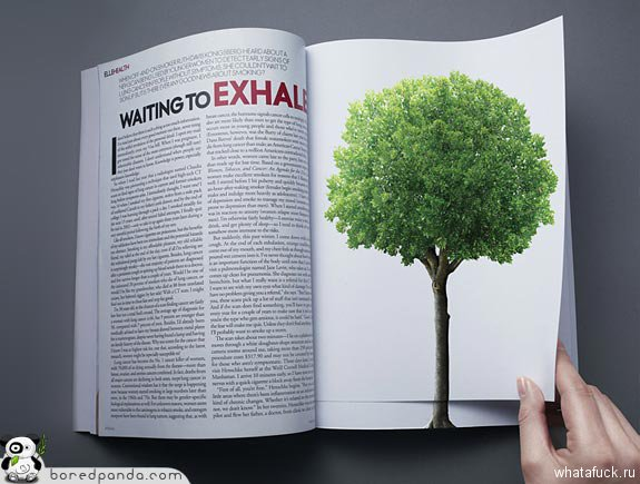 magazine-ads-greenpeace-1